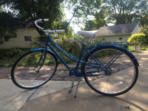 My beautiful blue bike